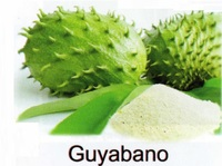 All-Natural Spray Dried Guyabano Powder