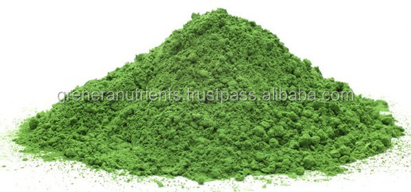 USDA Organic Natural Dried Moringa Oleifera Leaves powder