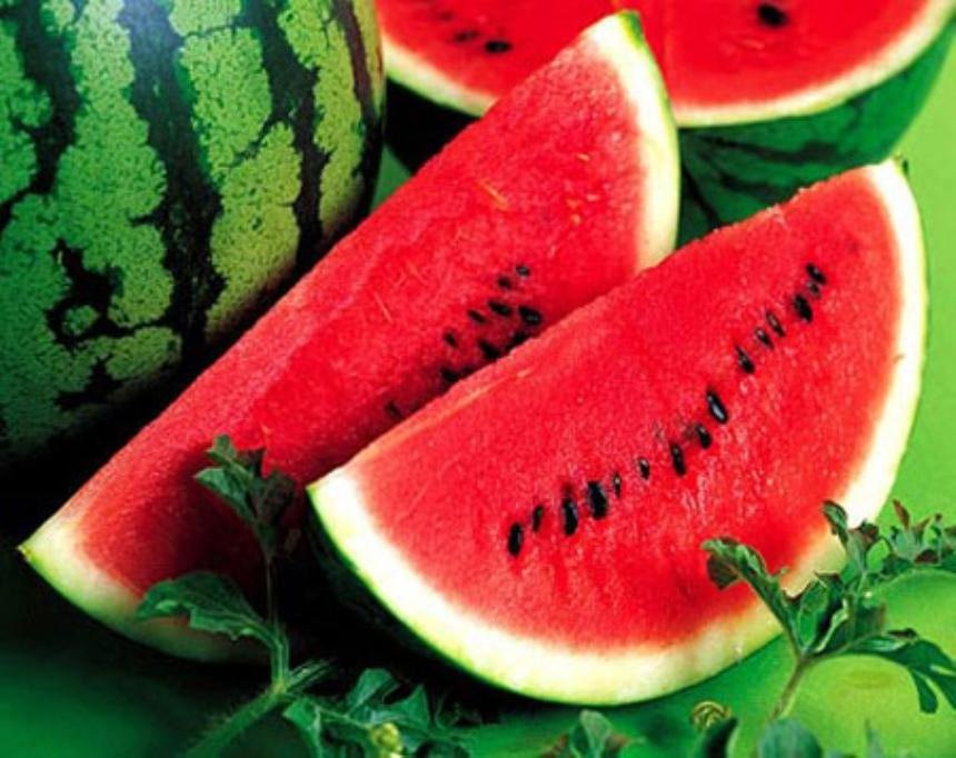 Red water melon for sales and export