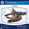 Widely Used Frozen Prawns Prices with Good Aroma and Freshness for Sale