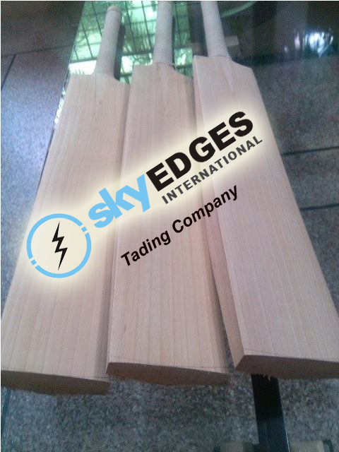 Plain Non Branded English Willow Cricket Bats OEM Supplier Best Prices