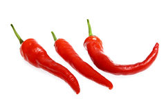 Natural Fresh Chili/Red Pepper at high quality