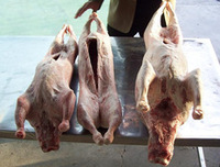 Boneless Lamb Mutton Halal , Sheep Meat Halal , Frozen Mutton