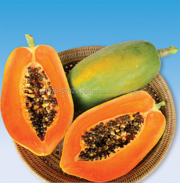 RED GLORY F1 - MARUTI PAPAYA SEEDS EXPORTER