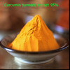 Curcumin Extract 85% / Turmeric Root Extract 85% From Borg Export