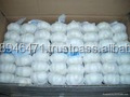Purle White Fresh Natural Garlic FOR SALE