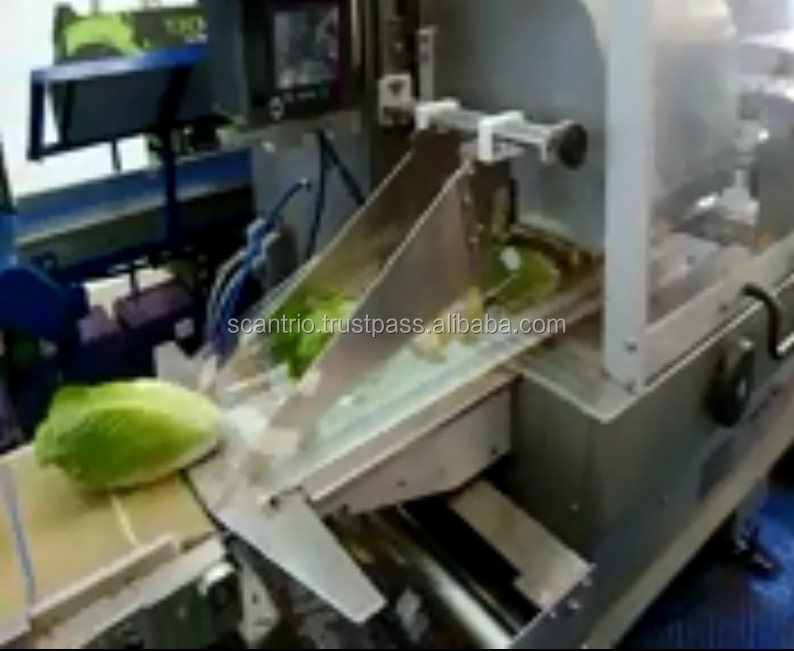 Automatic Fresh Tomato Potato Banana And Vegetable Packing Machine