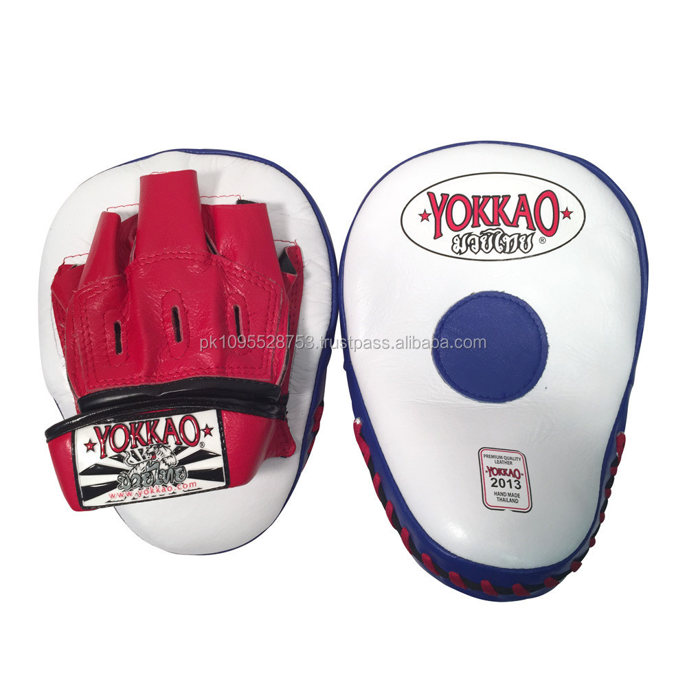 Kick Boxing Focus Pad