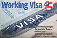 Working Permits
