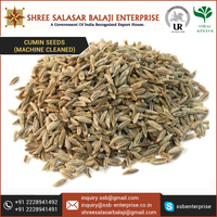 Pure Cumin Seeds cleaned from Sortex Machine
