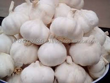 Fresh Pure White Garlic for sale at a low rate