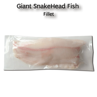 Giant SnakeHead Fish Fillet