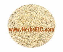 Importers of sesame seeds / golden sesame / white / Egypt