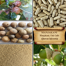 [ORGANIC] MANJAKANI / OAK GALLS / Quercus Infectoria / Vaginal Tightening / Fresh Powder, Extract, Capsules, Liquid, Oil