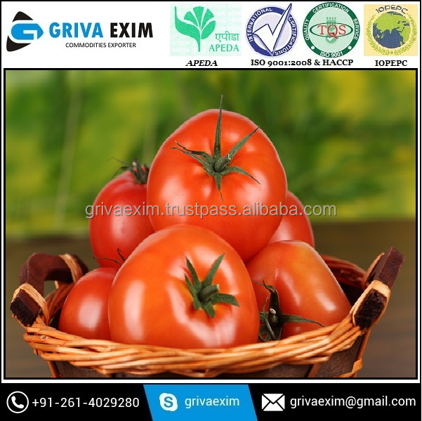 Fresh Tomato In 7 Kg Carton Box Packing