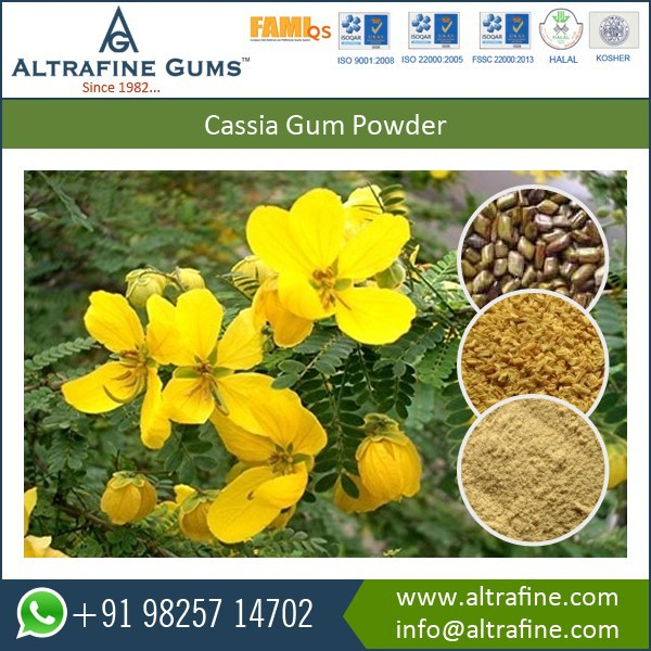 Most Demanding Cassia Gum powder In All type Of industries