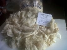 English White Tannery/Skin wool