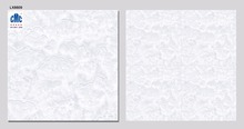 800x800 mm Good Quality Granite Nano Polish Floor Tile