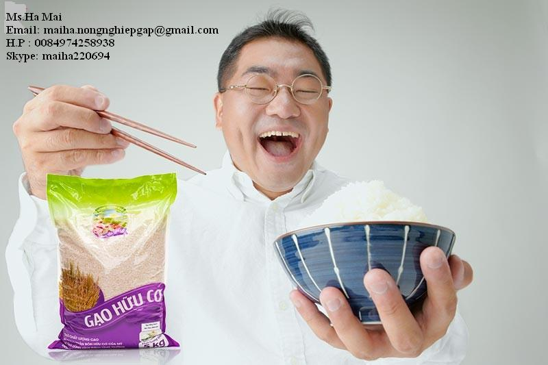 FRAGRANT RICE JASMINE FROM VIETNAM HIGH QUALITY-5% BROKEN LONG GRAIN RICE