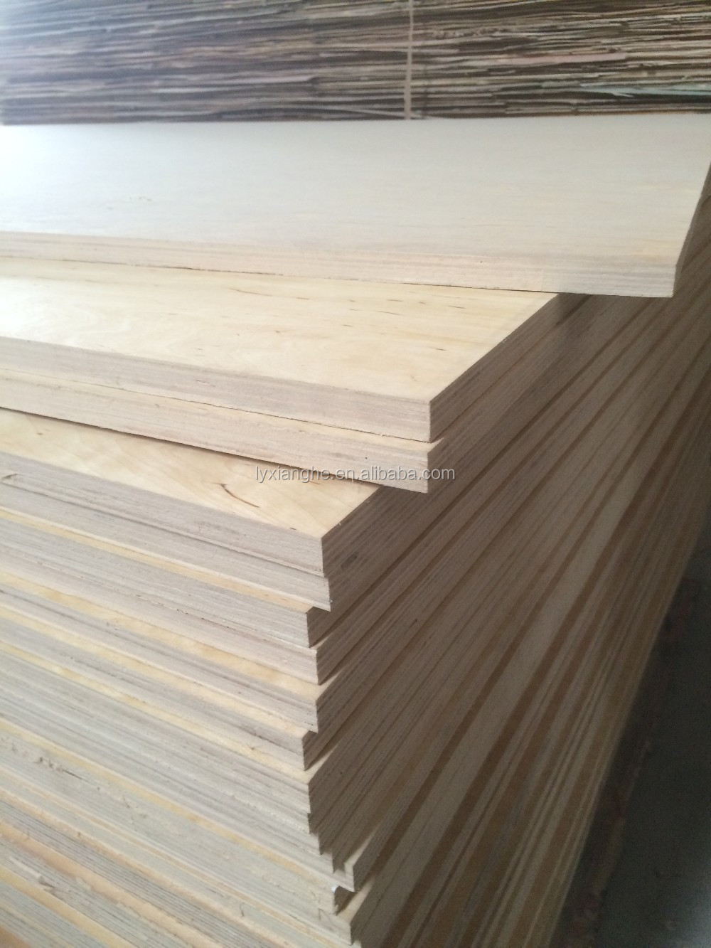 Baltic Birch Plywood ~ C d grade baltic birch plywood ply mm for canada