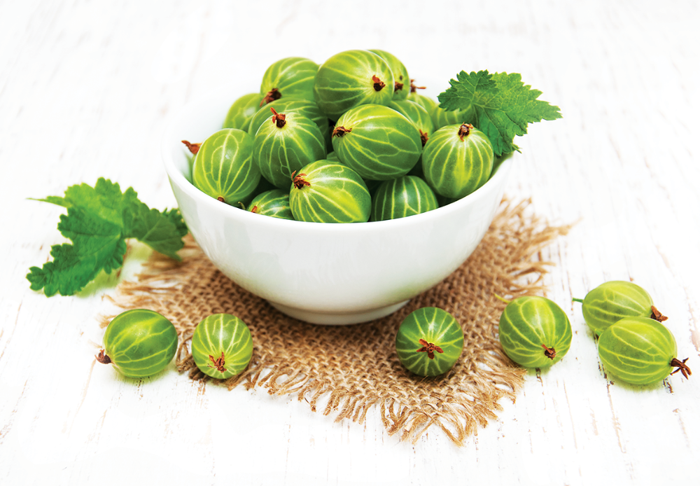 Gooseberry Herbal Extract