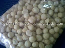 Whole and split Macadamia nuts and kennels
