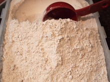 Quality Low Price Wheat Flour Suppliers