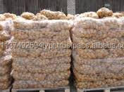 Best Quality fresh irish potatoes