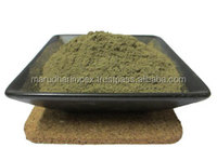 Herbal Extract fresh mint leaves Extract,mint flavor powder