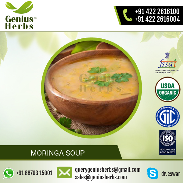 100% Organic Certified Moringa Soup for Bulk Sale