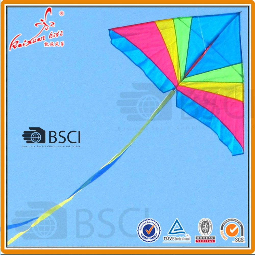 Large Rainbow Delta kite for kids easy assembling best selling kites from China
