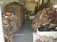Dried Mackerel , Salmon , Cod and Other Variety Stockfish- Cod or Torsk - Haddock or Hyse - Saithe or Sey - Ling or Lange