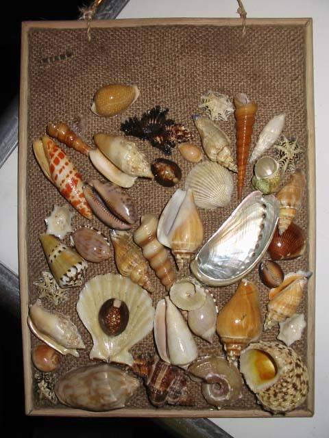 seashells, handicrafts, decors and native jewelry