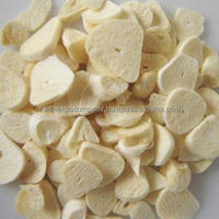 Exporter of Freeze Dried Garlic from India