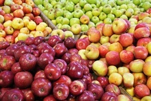 Fresh Royal Gala Apples for sell