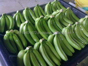 Indian Farm Produce High quality Bunches of Banana for sale
