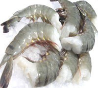 Frozen Raw Black Tiger Prawn Shrimp With Head-On Shell-On