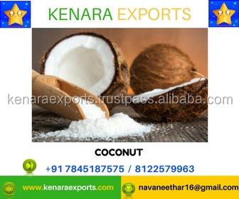 Natural Indian Semi Husked Coconuts