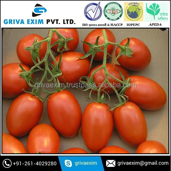 Dried Red Dehydrated Tomato Exporter