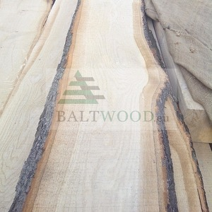 Unedged White Baltic sawn Oak lumber from Latvia