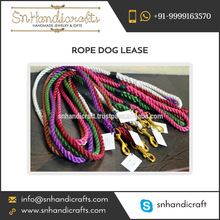 Handmade Ombre Rope Dog Leash with Brass Hardware