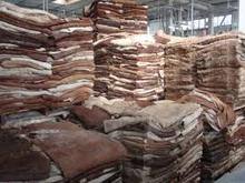 good quality Dry and Wet Salted Donkey/Horse Hide /Wet Cow Hides .