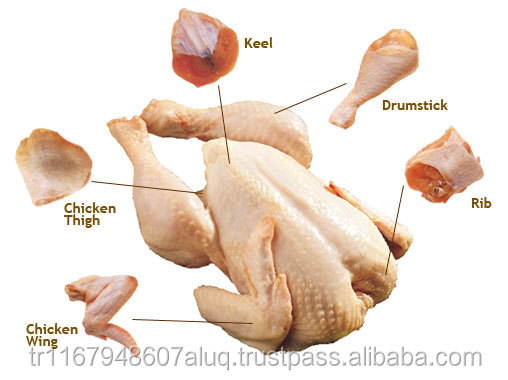 Brazilian Quality Halal Frozen Whole Chicken and Parts / Gizzards / Thighs / Feet / Paws / Drumsticks