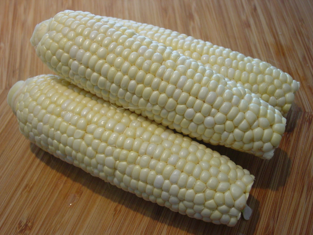 WHITE/YELLOW /RED Corn for animal feed and Human Consumption WITH Competitive price !!!