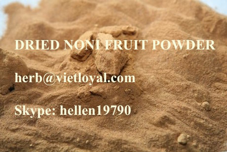Noni Fine powder- hot dry concentrated
