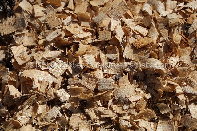 Wood Chips, Firewood, Wood Pellets, Briquettes with competitive pricing