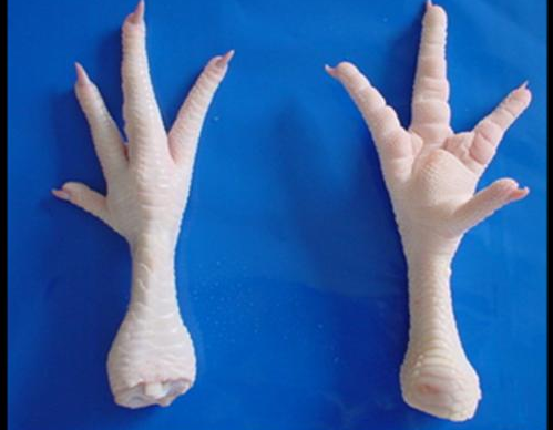HIGH Quality Chicken Feet