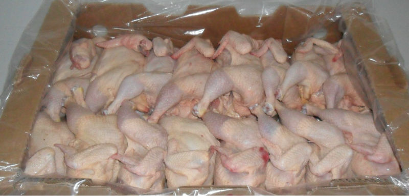 Best Halal Brazilan Frozen Whole Chicken / Chicken Feet / Wings and other Parts
