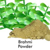 Organic Brahmi Powder in 500gms & 1kg Pouches