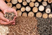 Best Briquettes,sawdust Wood,Firewood and wood pellets